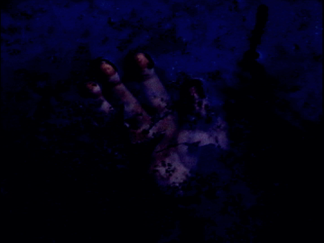 Vampire Weekend: Walcott (newgaze remix)